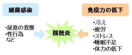 方 治し 膀胱 炎